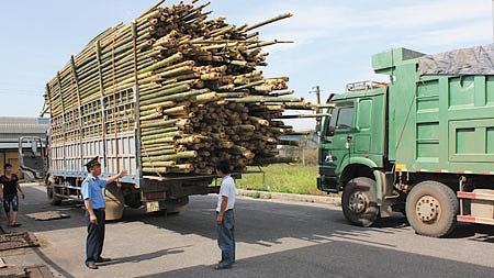 Phạt xe chở hàng quá tải